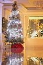 オーシャンズガーデンクリスマスディナー2019のご案内