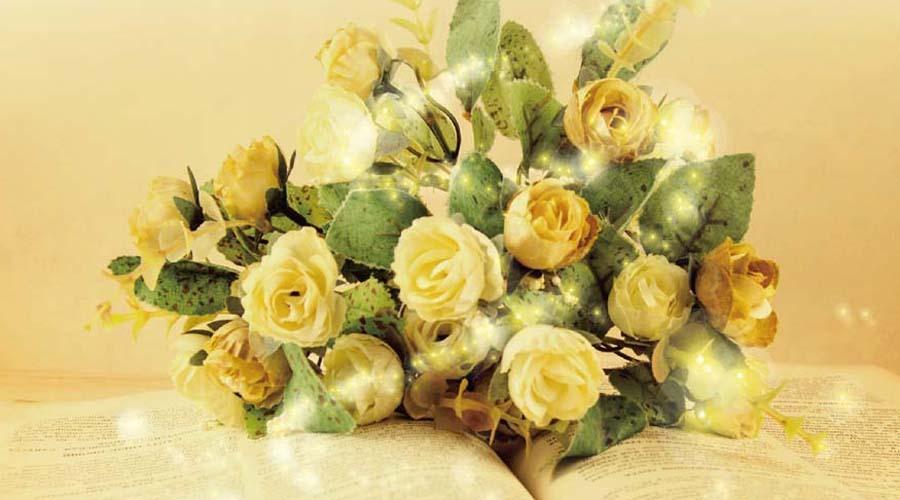 美しい声と言葉でストレス&冷えよさようなら!   「三浦摩紀さんの朗読ヒーリング&初夏の特製風水ランチョン」